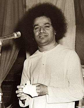 Causing harm to others is displaying animalistic behavior. The real sin is to regard what is spiritually one as manifold and diverse. - Baba